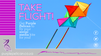 PP Fly A Kite Social Media